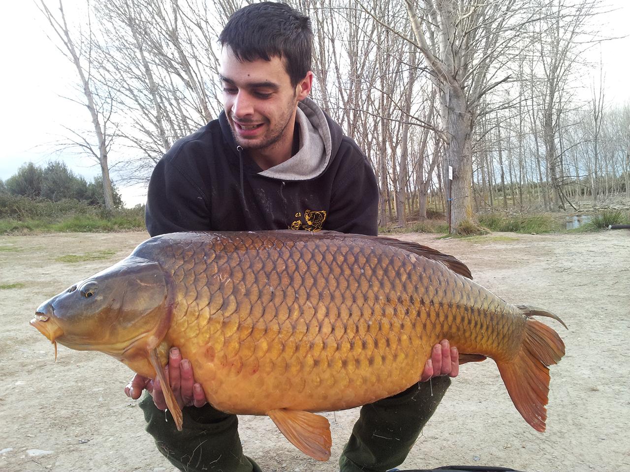 Adrian Marzo-2016-01