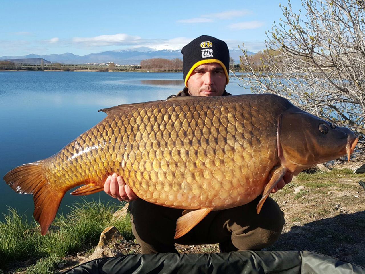Armando 23 kg Abril-2016