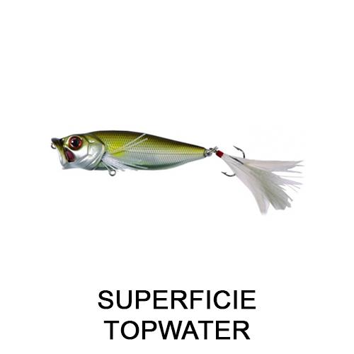 SUPERFICIE TOPWATER